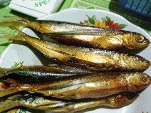 Kuliner : Ikan Terbang Asap, Khas Sulawesi Barat